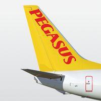 Pegasus Airlines Mobile Simgesi