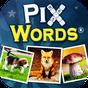 PixWords™