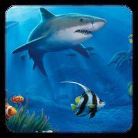 Biểu tượng Ocean Live Wallpaper