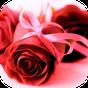 Imagens com Mensagens de Amor  APK