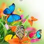 Живые Обои бабочка