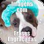 Imagens com Frases Engraçadas