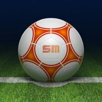 A-League Live 2014/2015 Simgesi