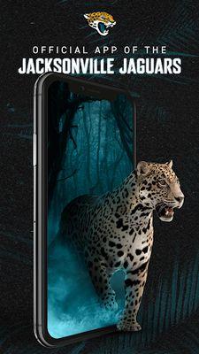 Image 3 of Jacksonville Jaguars