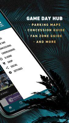 Image of Jacksonville Jaguars