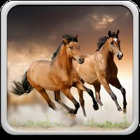 Paarden Live Achtergronden icon