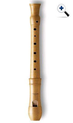 Virtual Flute Image