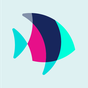 POF Free Dating App 3.8.3.1415546