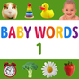 Baby Flashcards: 12+ Months