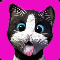 Ícone do Daily Kitten : gato virtual