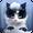 Frosty The Kitten Lite  APK