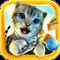 Cat Simulator