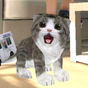 simulador Gato real  APK