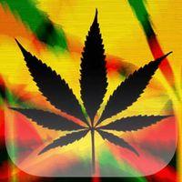 Telechargez Rasta Marijuana Fond D Ecran Apk Gratuit Pour Android