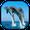 dolphin wallpaper hidup