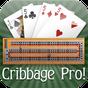 Cribbage Pro Online! 2.6.15