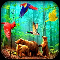 Forest Birds Live Wallpaper icon
