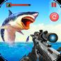 Angry Shark 3D Simulator Game  APK