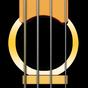 Bass Guitar Solo ( Baixo )