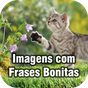 Imagens com Frases Bonitas  APK