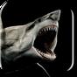 Shark 3D Live Wallpaper