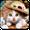 Kedi Canlı Duvar Kağıtları