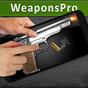 eWeapons™ Clube da Armas Sim