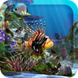 3D Aquarium Live Wallpaper HD 1.6.3