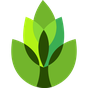 GardenAnswers Plant Identifier 6.4.7