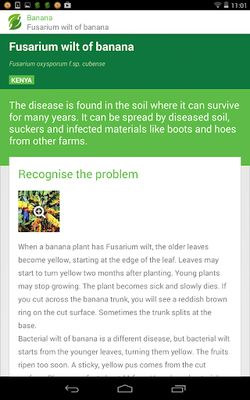Image 5 from Plantwise Factsheets Library