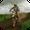 Offroad Bike Rider Simulator