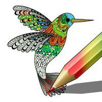 Ícone do Colorir
