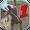 Ninja Samurai Assassin Hero