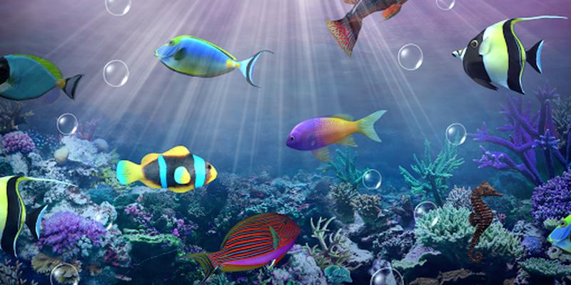 Aquarium Live Wallpaper für Android - Download