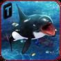Killer Whale Beach Attack 3D