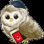Изучать Турецкий