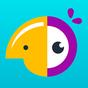 Hatchful - Logo Maker & Logo Generator