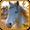 Paardenspel met mooie paarden  APK