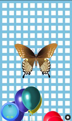 Image 5 of Balloon burst