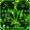 Rasta Weed Keyboard Theme