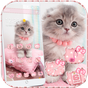 Fofa gatinha gato tema Cute Kitty Cat  APK