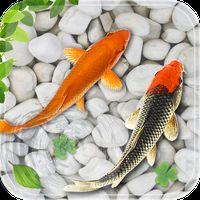 Icône de poisson vivre fond d'écran 2018 aquarium koi fond