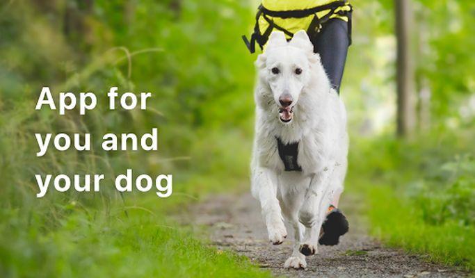 Image 5 of Rundogo - track dog's workouts