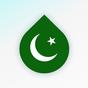 Zrzuty: darmowa nauka języka i alfabetu arabskiego