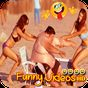 Top Funny Videos HD