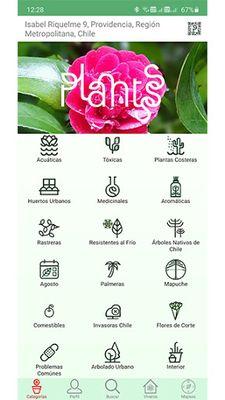 Image 2 of Plantsss