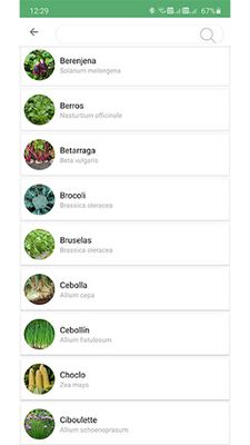 Image 1 of Plantsss
