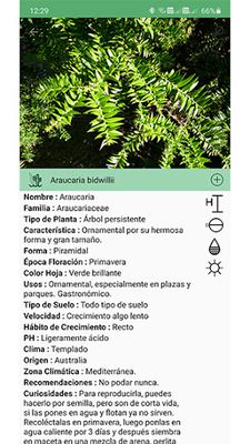 Image from Plantsss