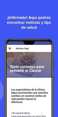 Image 4 of YAPP Chile