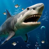 3D Ocean Live Wallpaper for Free apk icon